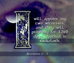 i-will_700